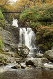 Falls at Inversnaid in autumn. Stream and Falls at Inversnaid in the autumn Stock Photography