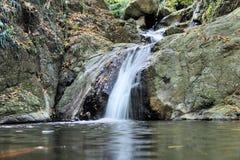 Falls in island Palawan jungle Royalty Free Stock Photography