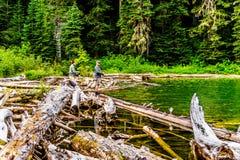Falls Lake near the Coquihalla Summit in British Columbia, Canada stock images