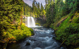 Falls of Oregon stock photos