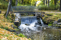Falls in park in the autumn Royalty Free Stock Photo