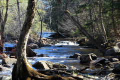 Falls and River royalty free stock photography