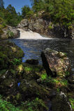 Falls of Shin in Scotland in United Kingdom 2 Royalty Free Stock Photo