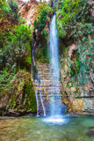 Falls Shulamit and pond with emerald water Stock Photo