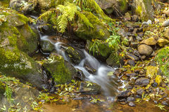 Falls on the small mountain river Stock Photo