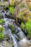 Falls on the small mountain river in a wood Stock Photo