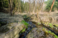 Falls on the small mountain river in a wood Royalty Free Stock Images