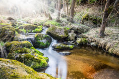 Falls on the small mountain river in a wood Stock Images