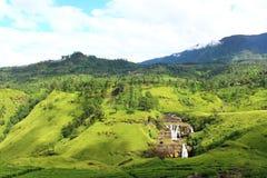 Falls St. Clair and tea plantations Royalty Free Stock Image