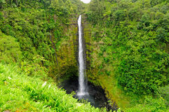 Falls in the tropics Stock Photos