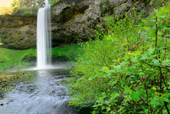Falls. USA. Oregon state. Stock Photos