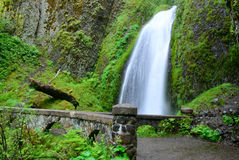 Falls. USA. Oregon state. Stock Images