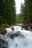 Falls in wood, the mountain river Stock Images