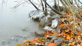 FallScape. This photograph shows a quiet calm riverbed with colorful fallen leaves Stock Photos