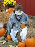 fallscarecrow Royaltyfri Foto