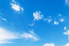 Fallskärmsjägare som skjuta i höjden i himlen fotografering för bildbyråer