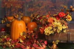 Fallszene mit Kürbisen und farbigen Blättern Stockbild