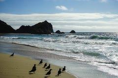Falltag auf der Kalifornien-Küste Lizenzfreies Stockfoto