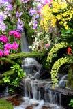 fallthailand vatten Arkivbilder