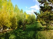 A falltime landscape Stock Photo