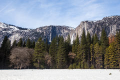 fallvinter yosemite Royaltyfria Bilder
