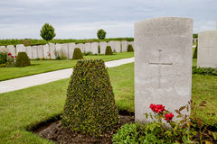 Flanders fields Royalty Free Stock Photo