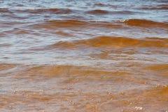 Falowa morze plaża na odgórnym widoku Fotografia Royalty Free