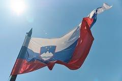 Falowanie flaga państowowa Slovenia na niebieskiego nieba tle obrazy stock