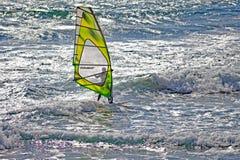 Falowy surfingowiec obrazy stock