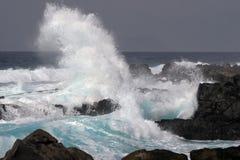 falowy wiatr Fotografia Royalty Free