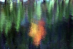 Falreflexionen auf einem See Lizenzfreies Stockfoto
