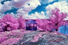 Falsa primavera Fotografía de archivo libre de regalías