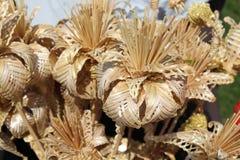 Falsche Blumen Schön und selten Lizenzfreie Stockfotos