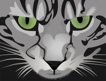 Falsche Katze Lizenzfreies Stockfoto