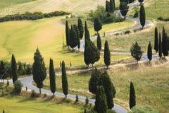 Falsche Straße der TOSKANA-Landschaft mit Zypresse Stockfoto