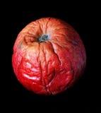 Falscher Apfel Lizenzfreie Stockfotos