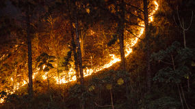 Falsches Feuer Stockfotografie