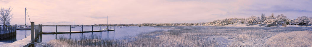 False color infrared panorama Royalty Free Stock Photos