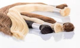 False colored hair on white background. Hair for hair extension. Royalty Free Stock Photography