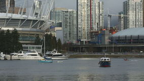 False Creek Dragon Boat Practice, Vancouver stock video