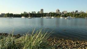 False Creek Ducks, Anchored Boats stock video footage