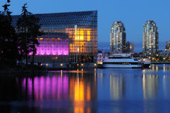 False creek night scene Royalty Free Stock Image