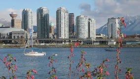 False Creek Spring, Vancouver stock footage