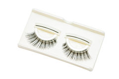 False Eyelashes. In Box. Dicut on white background royalty free stock photos