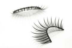 False eyelashes isolated on white Stock Photography