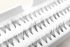 False eyelashes in pack. Closeup Stock Photos