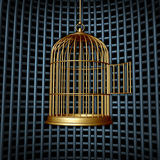 False Freedom. And limited liberty concept as an open bird cage inside a larger cage or prison as a conspiracy concept for human rights or a business symbol for Stock Image