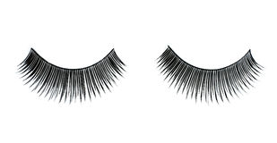 False lashes Royalty Free Stock Photo