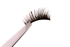 False lashes Royalty Free Stock Photography