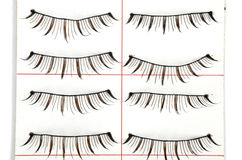 False lashes Royalty Free Stock Image